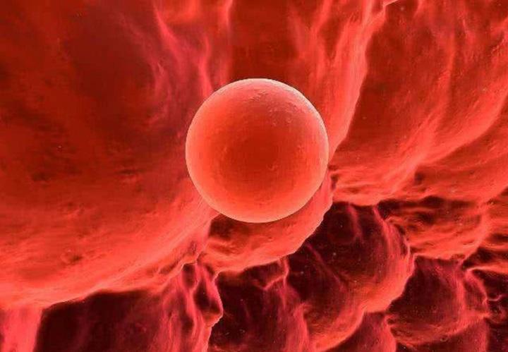 正确的了解排卵期出血可以受孕