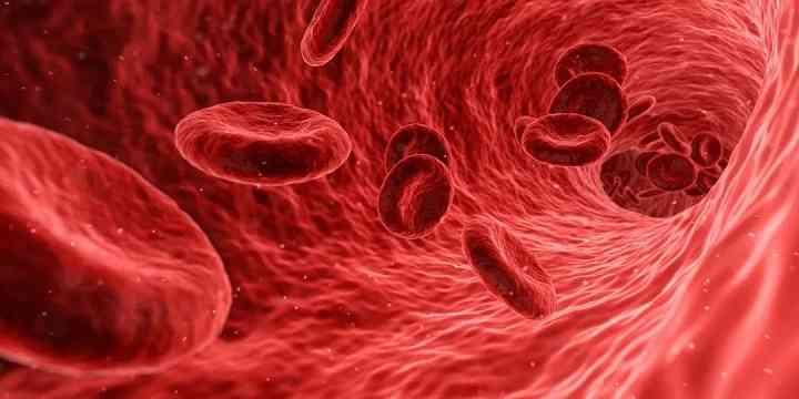 地中海贫血能否治愈