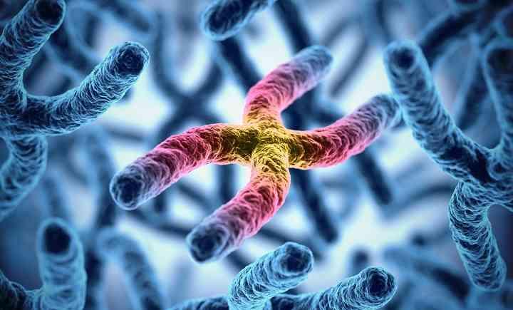 染色体异常原因
