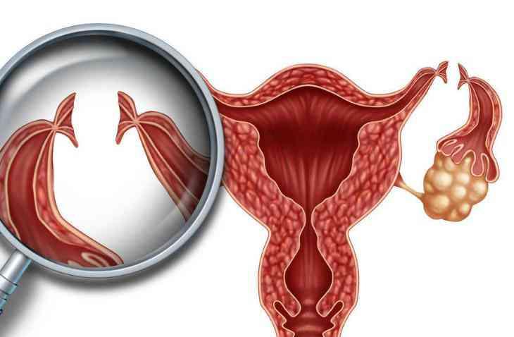 卵泡早期长方案需要注意什么