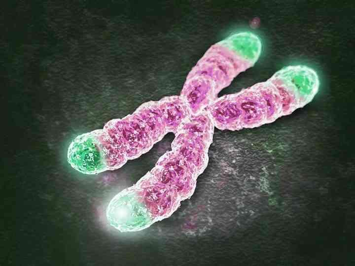 染色体异常解决方式