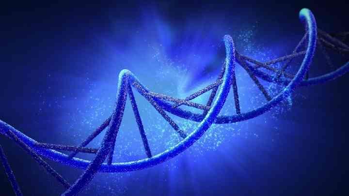 染色体异常会导致心脏畸形