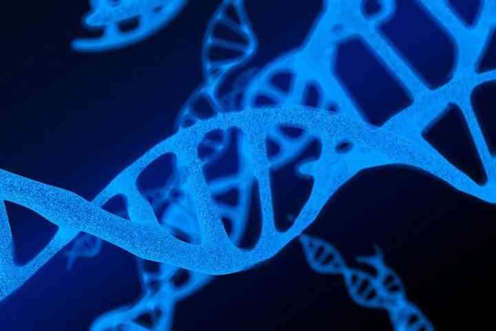 染色体异常食物选择