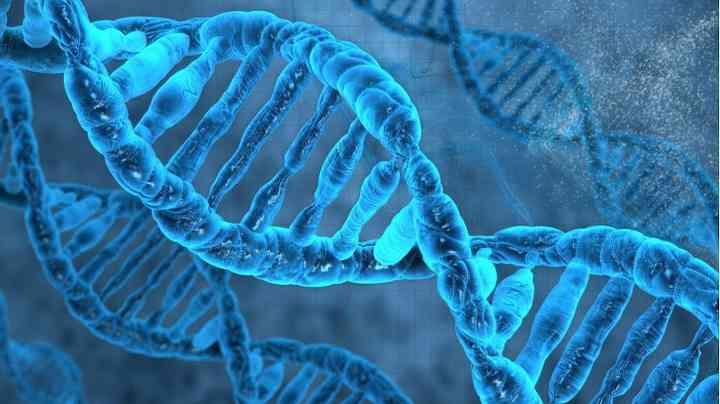 染色体异常的表现