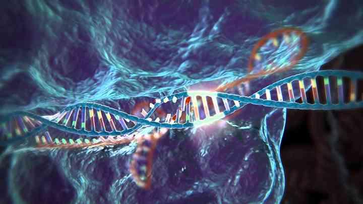 生物因素会导致染色体发生异常