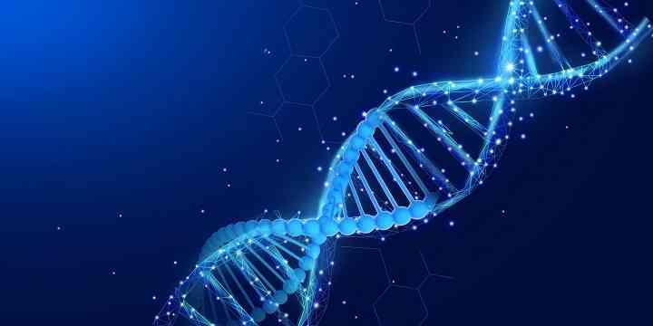 病毒感染会导致染色体异常
