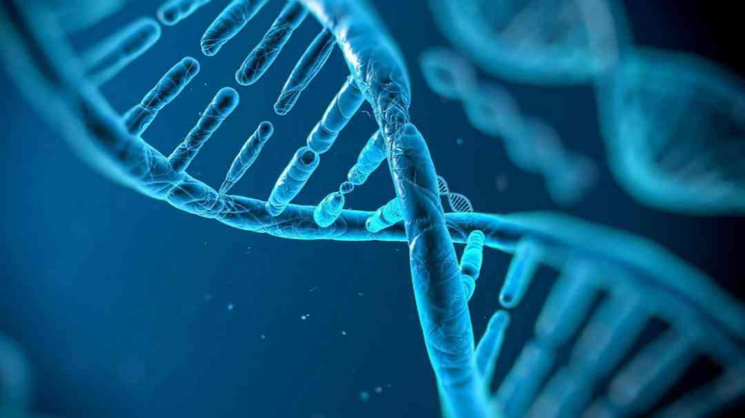 导致染色体发生异常的因素
