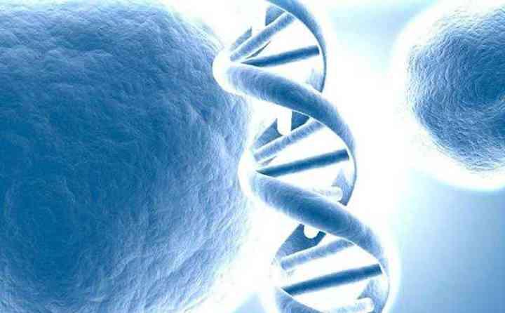 第三代试管能避免哪些疾病