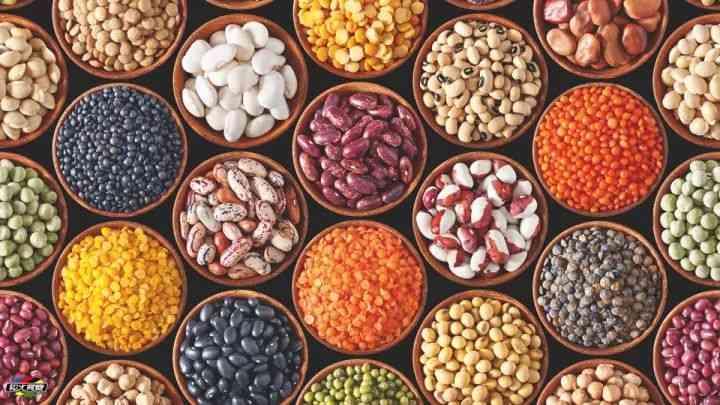 多吃豆类可以助孕