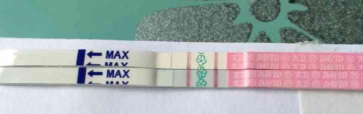 测卵纸计算排卵期
