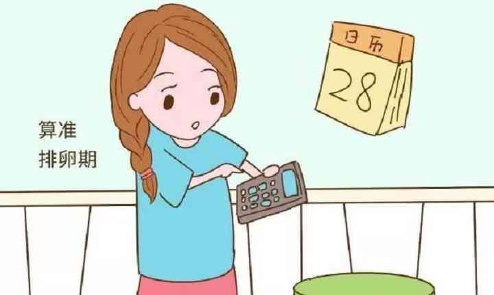 排卵期同房可增加怀孕几率